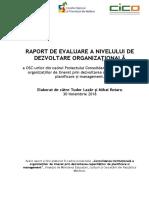 Raport-Final-privind-Dezvoltarea-Organizațională-CNTM_final
