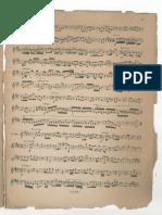 55_PDFsam_Gattermann