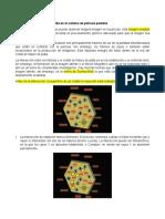 Formación de la imagen latente (Y)
