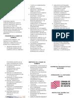 folleto camara de comercio