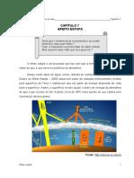 capi_7.pdf