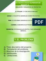 ESQUEMAS GENERALES DE FORMULACIÓN