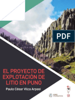 Informe LITIO en PUNO online (1)