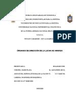 TRABAJO 2.ÓRGANOS DE DIRECCIÓN DE LA LUCHA NO ARMADA