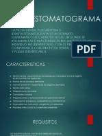 201823272-IDENTOESTOMATOGRAMA-pptx