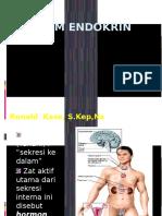 ENDOKRIN SISTEM.pptx