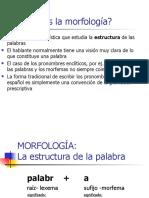 morfologiaestructura (1)