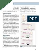 Cell 1c.pdf