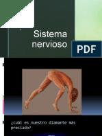 S-NERVIOSO 2020