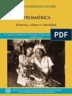 Afroamérica, historia, cultura e identidad