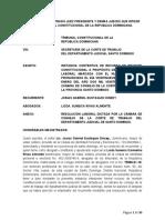 RECURSO DE REVISION CONSTITUCIONAL DESPIDO DIRIGENTE SINDICAL (Repaired)