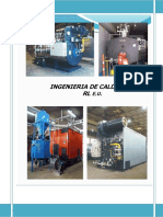 INFORME TECNICO 1360 BELLEZA EXPRESS - mantenimiento gral caldera.pdf