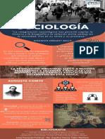 infografia sociologia