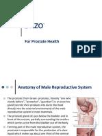 BRIZO___For Prostate Health.pdf