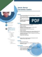 C.V. Cervantes Castro Jesus Aaron
