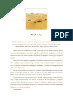 A Cidade Dos Pocos Jorge Bucay a4