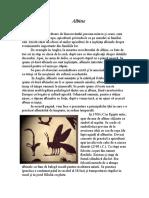 Albine 1.doc