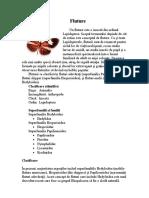 Fluture.doc
