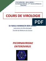 4 Entérovirus 2018.pdf