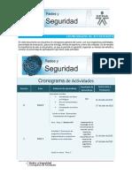 CronogramaAct_RyS-1007216