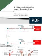 farmacos-adrenergicos 1[4287]