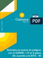 Guia actualizacion IPEVR - Covid 19.pdf