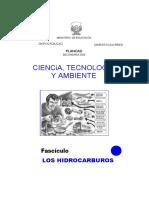 Los Hidrocarburos-convertido.docx