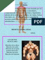 m axial