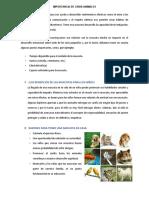IMPORTANCIA DE CRIAR ANIMALES