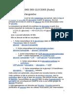 Cours3 Métabolisme Glucides