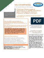 boletín campaña 1.pdf.pdf.pdf.pdf
