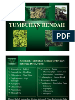 2_TUMBUHAN RENDAH