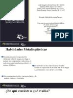 HABILIDADES METALIGUISTICAS