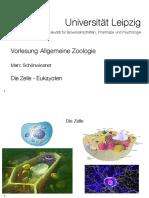 Zool-02-Zelle-Eukaryoten