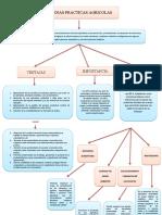 415222640-Mapa-Conceptual-Buenas-Practicas-Agricolas.docx