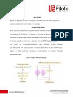Hoja-membrete-carta-color (14)