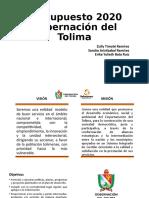 Gobernacion Del Tolima Ppt 1