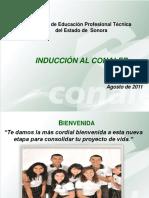 manual_induccion Conalep