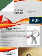 MEDIOS DE PRUEBA1