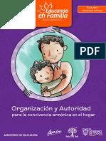 Guia-de-Organizacion-y-Autoridad.pdf