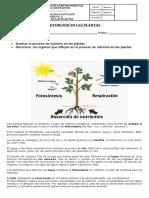 GUIAS CIENCIAS NATURALES-GRADO 2°-SEMANA 6