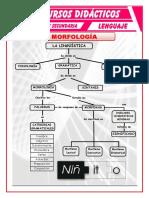 Morfología-para-Quinto-de-Secundaria