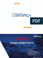 3 TEORÍA-TEJIDO CONECTIVO II.MORFO GENERAL-2020-1 (2)