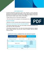Derivativos - Conceitos.pdf
