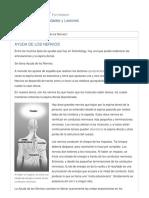 El_Curso_sobre_Ayudas_para_Enfermedades_y_Lesiones_22854