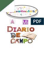 diario de campo.docx