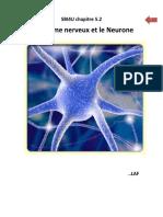 SBI4U_chapitre 8-2_STSE_système nerveux (1)