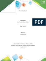 Fitopatologia fase 3 _ paso_ 4
