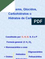 carbohidratos - copia