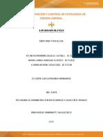 PLAN DE PREVENCION CUIDADO SISTEMA ENDOCRINO